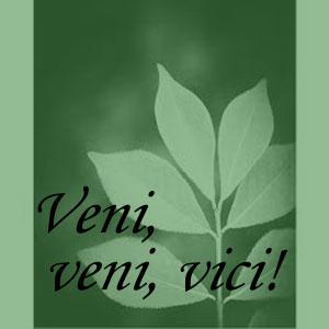 Veni-Saying2